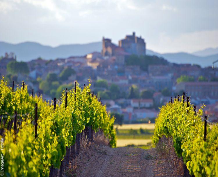 fb routes vins.1493473750 610